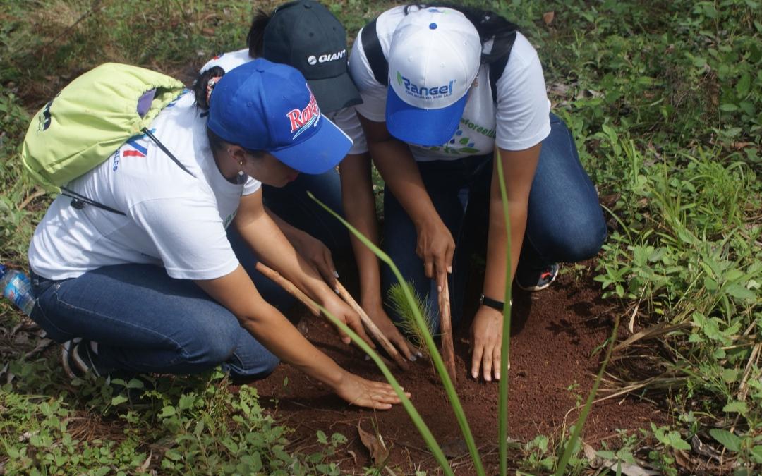 Equipo de Rangel participa en Jornada de Reforestación en Loma Guaigüí