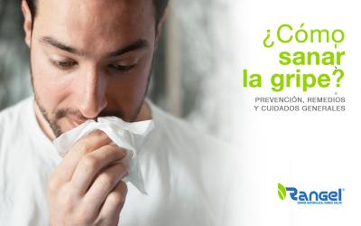 ¿Cómo sanar la gripe? Prevención, remedios y cuidados generales