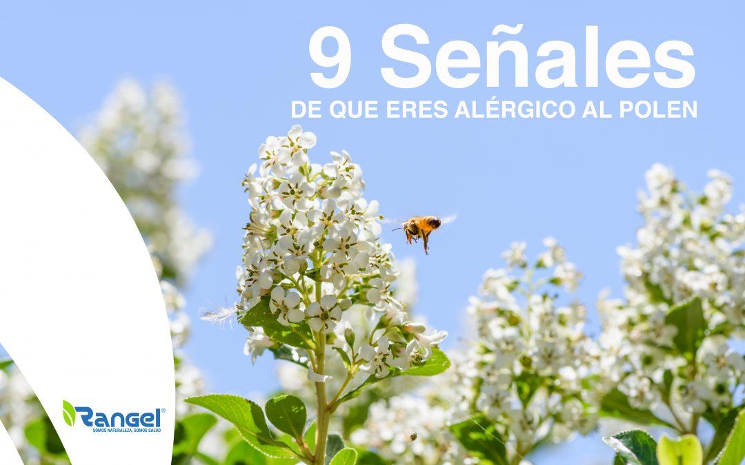 Primavera: 9 Señales de que eres alérgico al polen